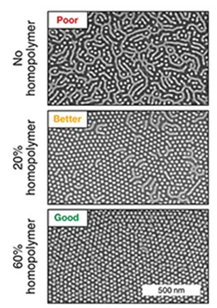 Small Polymers Can Have a Big Impact on Self-Assembly